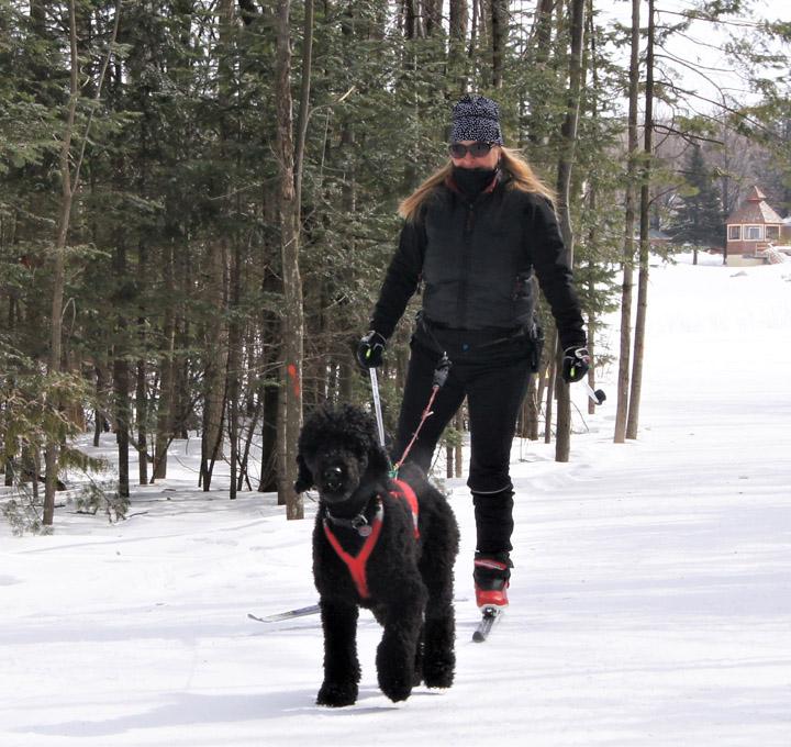 Dawin All Spiced Up Ski-Joering