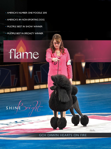 Hearts On Fire Eukanuba